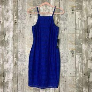 Bebe   Cobalt Dress